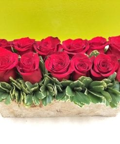Cupid's Garden - Pave Style Rose Arrangement