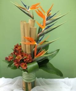 Bamboo, Birds of Paradise & Tropical Foliage - Bergen County, NJ Florist